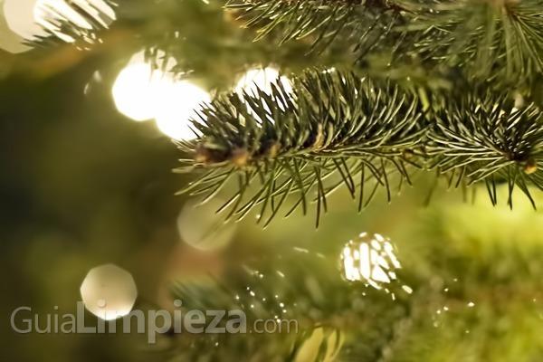 ¿A qué quieres que huela la Navidad? Crea tu propio ambientador navideño