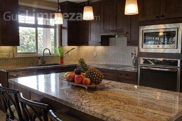 ¿Cómo eliminar las hormigas de la cocina en verano?
