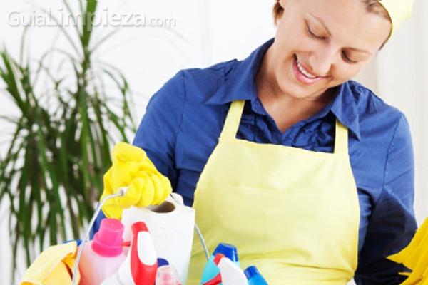 Ayuda a domicilio un servicio de limpieza personalizado for Empresas de limpieza a domicilio