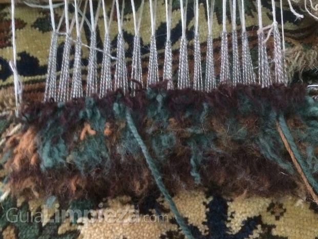 persépolis limpieza y restauración de alfombras - guialimpieza